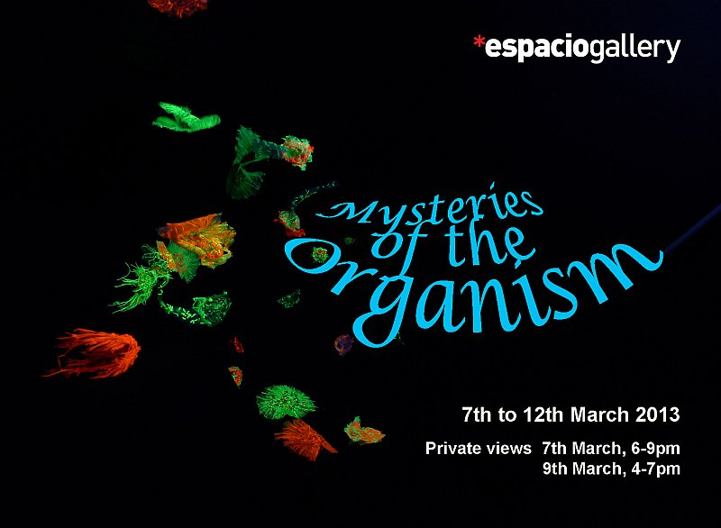Ahmed Farooqui - Mysteries of the Organism at Espacio Gallery